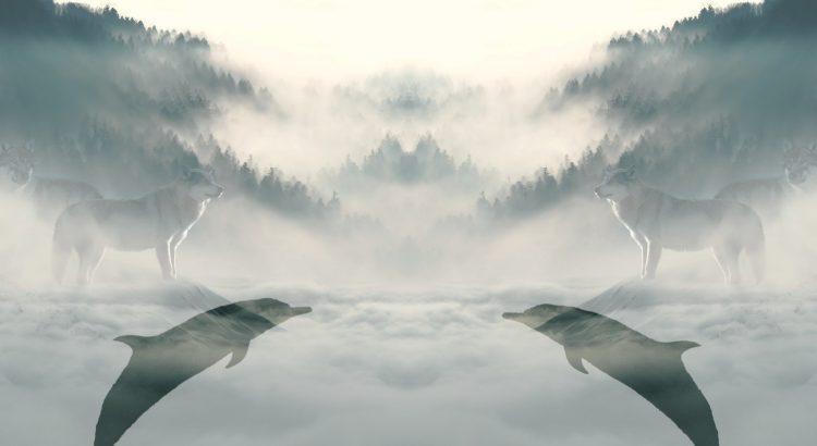 бэкап в облаке